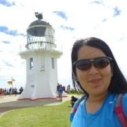 Cape Reinga and the Bay of Islands
