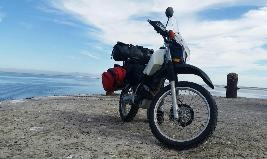 Coolest spot in Guerrero Negro
