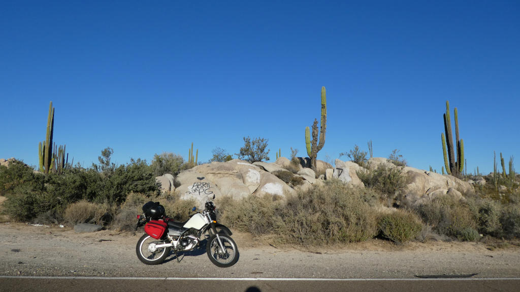 Riding through a mindbogglingly amazing landscape consisting of HUGE cacti and HUGE boulders.